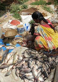 Umesh U V - Fish Cleaning