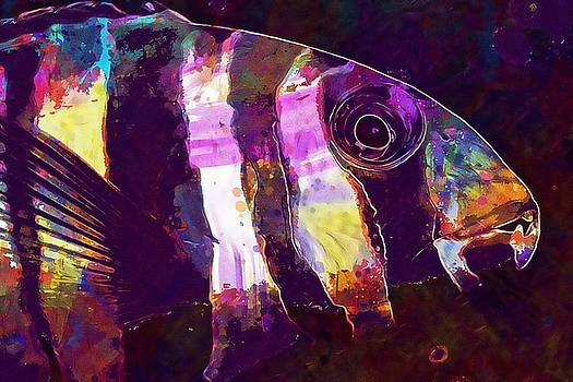 Fish Colorful Underwater Ocean  by PixBreak Art
