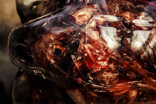 Fish Heads 02 by Grebo Gray