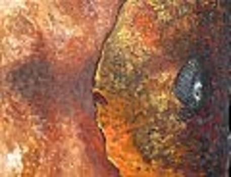Fish In Fire by Lotte Pedersen
