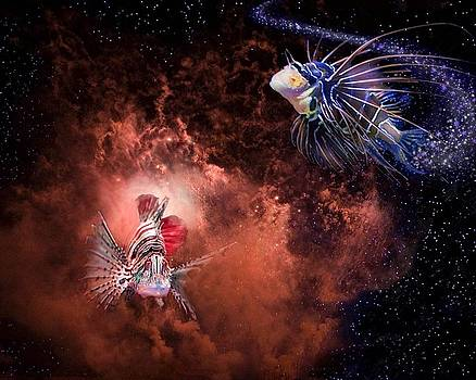 Fish in Space by Renee Althouse