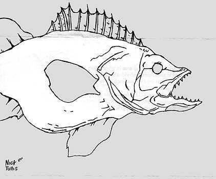 Fish by Nicholas Tullis