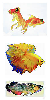 Fish - Original Watercolors by Roger Smith
