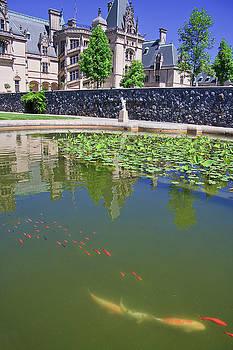 Jill Lang - Fish Pond at Biltmore