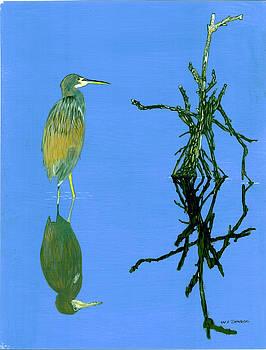 Fish Stalker by William Demboski
