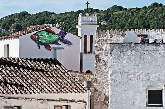 Pedro Cardona Llambias - Fish swimming in vintage town roofs