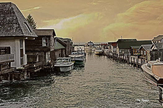 Fish Town by Peg Runyan
