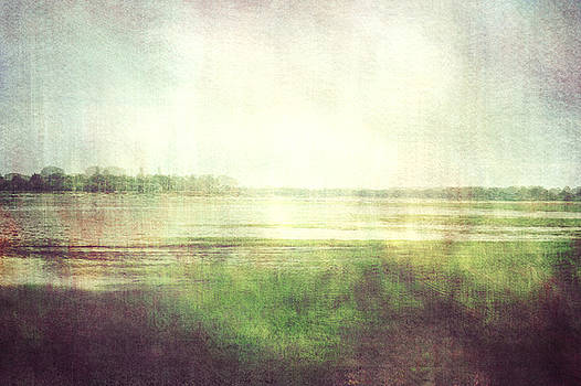 Fishbourne Marshes 02 by Violet Gray