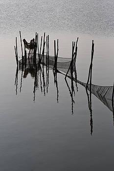 Fisher net by Dario Pozzati