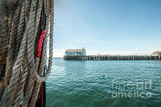 Fisherman's Wharf by Michael James