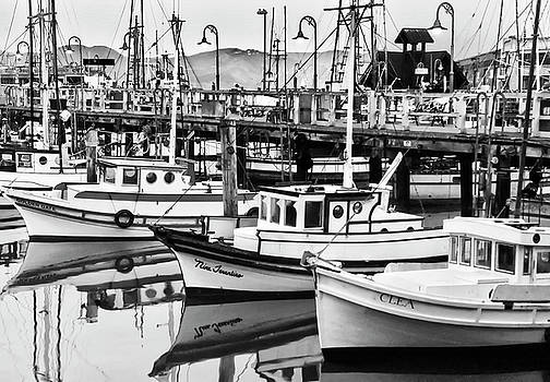 Mick Burkey - Fishermans Wharf