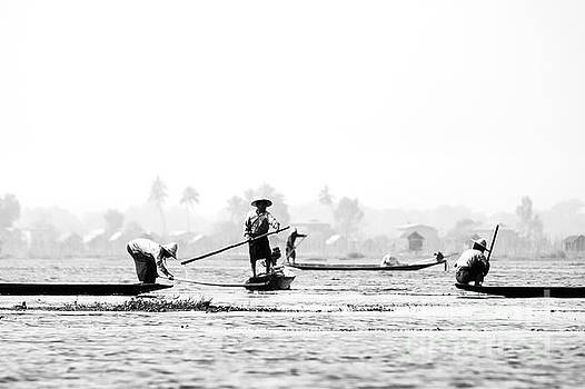 Fishermen in Inle Lake Myanmar by Phatthanun Srisombut