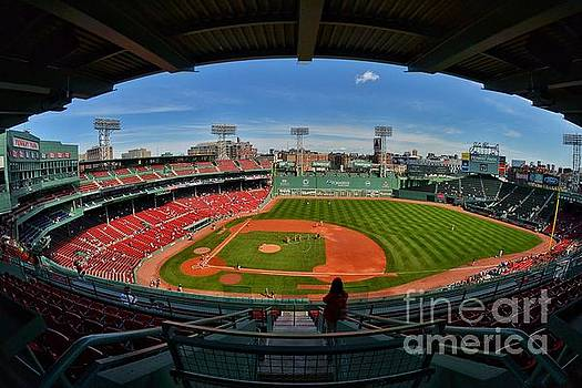 Fisheye Fenway  by SoxyGal Photography