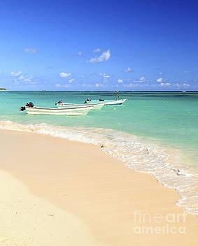 Elena Elisseeva - Fishing boats in Caribbean sea