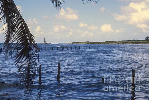 Bob Phillips - Fishing Cove
