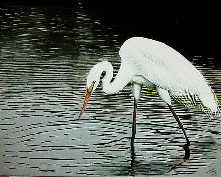 Fishing Egret by Suzahn King