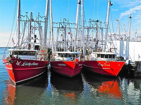 Fishing Fleet by E Robert Dee