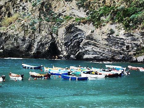 Fishing Fleet Liguria by Paul Barlo