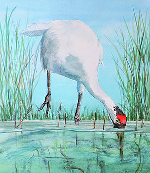 Vicky Lilla - Fishing for Food