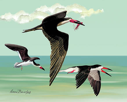 Fishing in the Gulf by Anne Beverley-Stamps