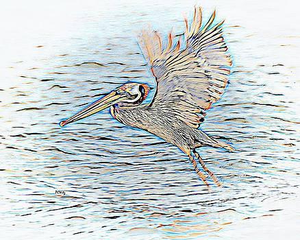 Patrick Witz - Fishing Pelican
