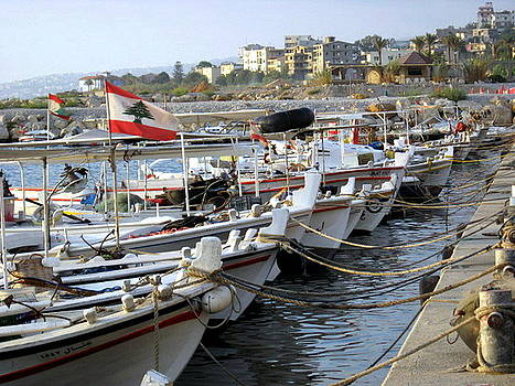 Fishing Port With Lebanon Flag by Therese AbouNader