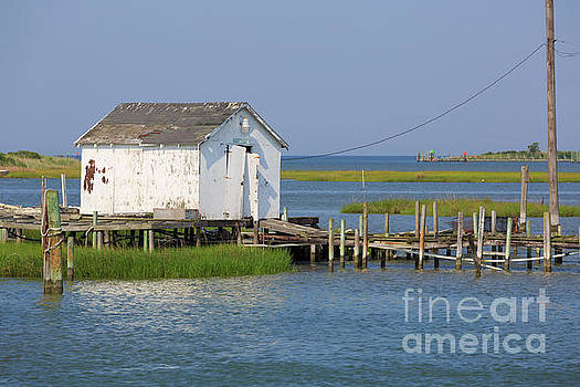 Fishing shanty on Tangier Island in Chesapeake Bay by Louise Heusinkveld