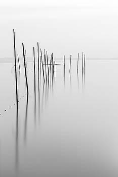 Fishing Trap by Holger Nimtz