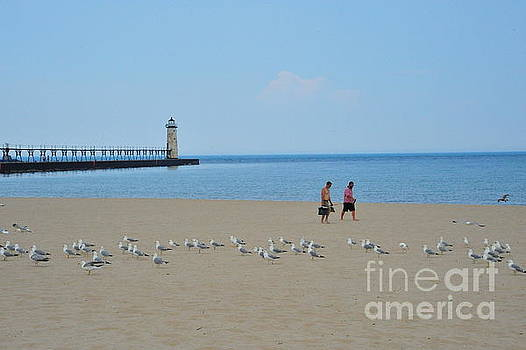 Terri Gostola - Fishing with the Seagulls at the Manistee Lighthouse
