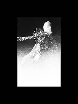 Fishnet Dance Three by Michael Rutland