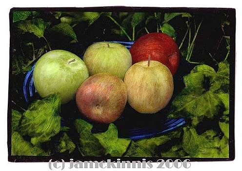Five Apples by Jim McKinnis