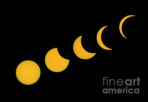Five Phases of the Eclipse by Martin Konopacki