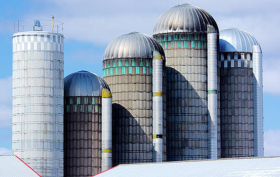 Five Silos At the North End of Cayuga Lake by Larry Jost