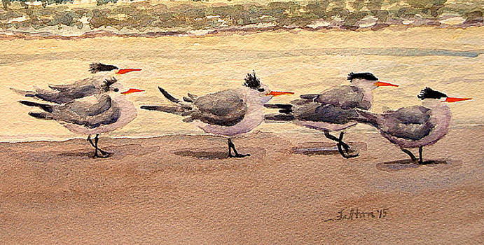 Five Terns by Julianne Felton