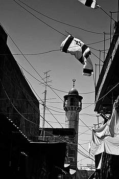 Flag and Mosk by Michael Gora