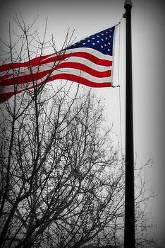 Flag In December by Renae Sears
