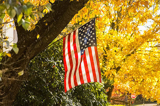 Flag in Fall by Kathleen McGinley