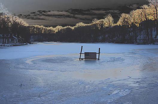 Flag On Frozen Lake by Thomas  MacPherson Jr