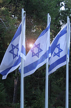 Flags of Israel Blowing in The Wind by Eliyahu Shear