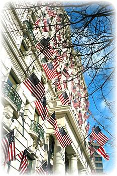 Flags of the Willard by Matthew Jack