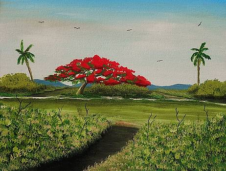 Flamboyan a la orilla del rio by Edwin Alverio