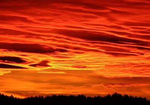 Tracey Harrington-Simpson - Flame Coloured Sunset Sky