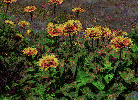 Kathy Kelly - Flame Zinnias Garden