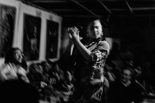 Flamenco Dancer by Mark Wagoner