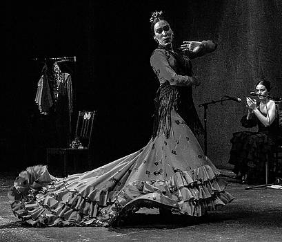 Flamenco Puro by Michael Gora
