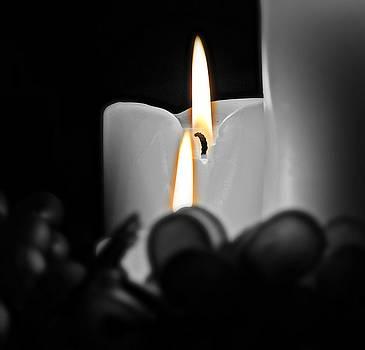 Flames Of Hope by Renae Sears