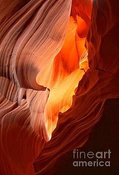 Adam Jewell - Flames Under The Arizona Desert