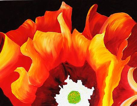 Flaming Cactus by John Johnson