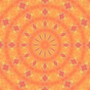 Flaming Sun by Elizabeth Lock
