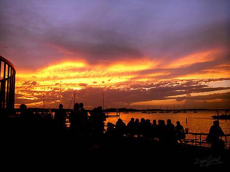 Flaming Sunset by Zafer Gurel
